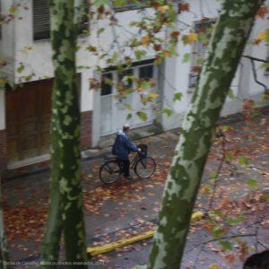 El viejo en su Bici 2013, Daniel de Carvalho, todos os direitos reservados, Canon rebel X