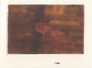 Gravura em Serigrafia Policromia 07 em Serigrafia 2016 Imagens para livro P -Daniel de Cavalho© todosdireitos reservados