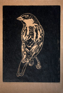 Xilo Gravura Pardal, 2015 Xilogravura em craft, tiragem: 5 cópias 31,5x48,5cm